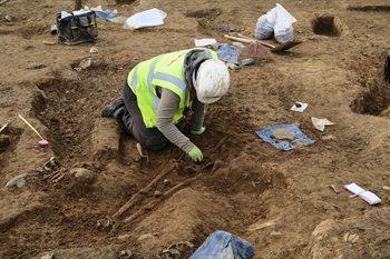 FML excavations 1